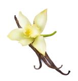 D6030529 7E39 47F1 A0DA DBDE7BCE52DE Our aromatherapy fragrances are heavenly scented